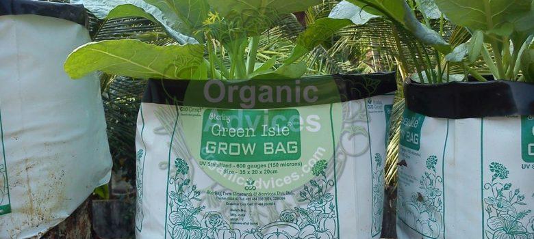growbag usage in organic farming