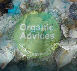 fish amino acid usage details