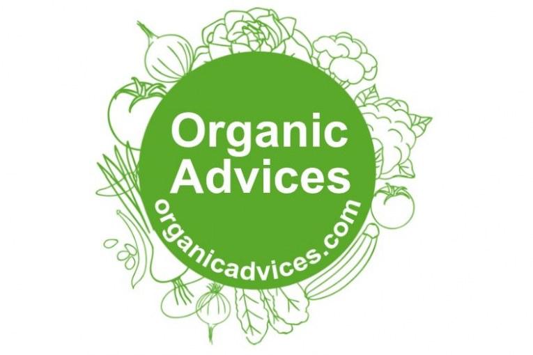 Banana peel, egg shells and tea waste – make an effective organic fertilizer